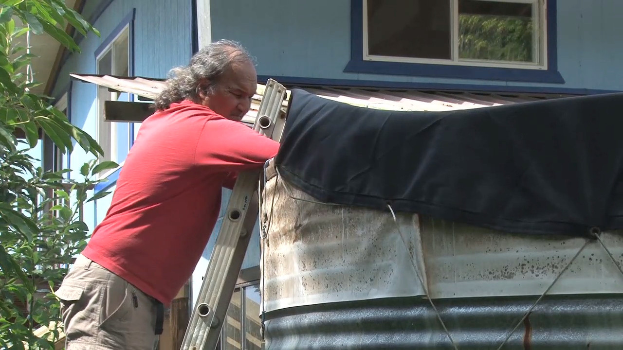 VIDEO: Fighting Mosquitoes In South Kona