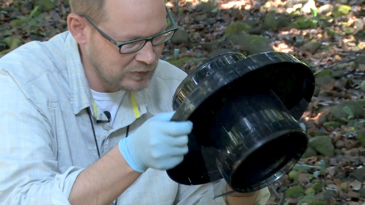 VIDEO: Mosquito Traps Tested In Kona During Dengue Outbreak