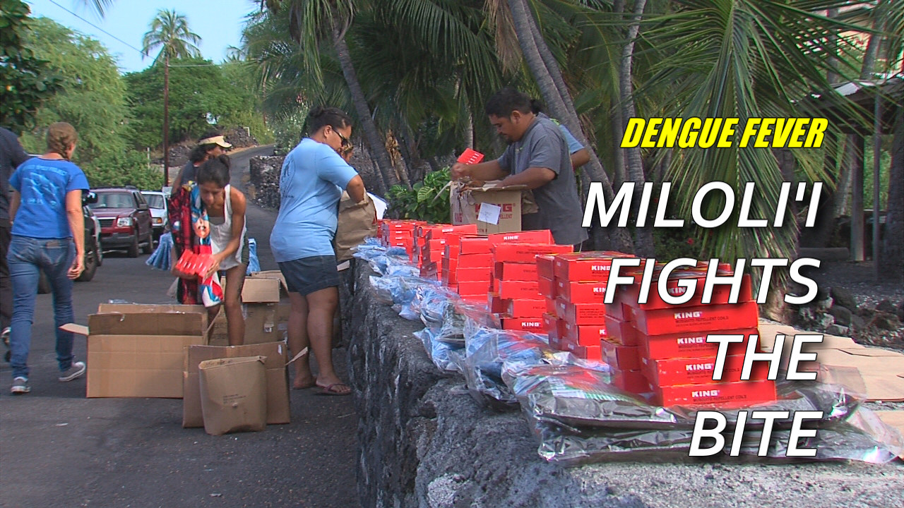 VIDEO: Supplies Donated To Milolii For Dengue Fight