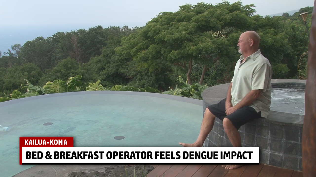 VIDEO: Dengue Tourism Effect Felt By Kona B&B Owner