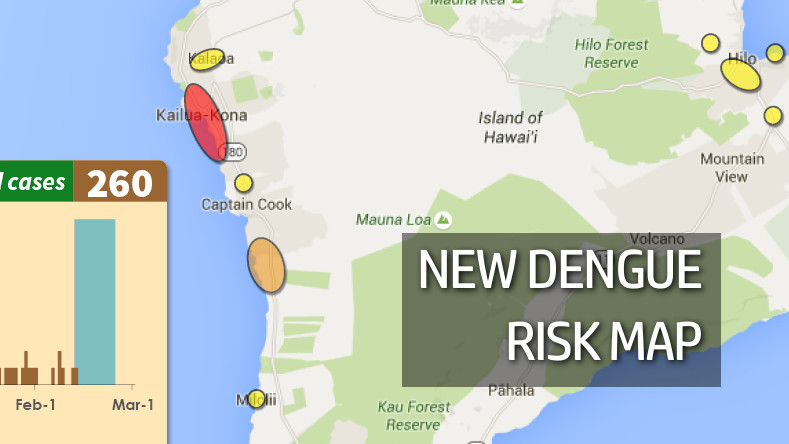 New Dengue Fever Risk Map Posted, State Ramps Up For Zika Testing