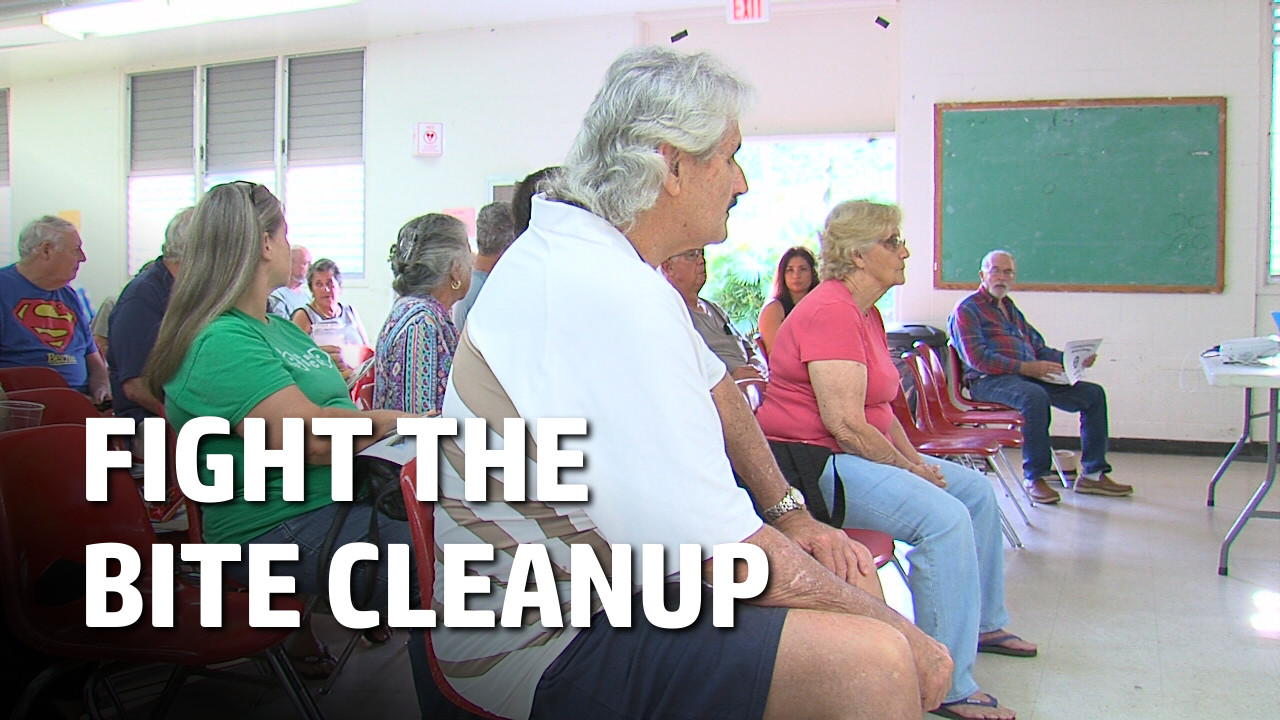 VIDEO: Fight The Bite Cleanup To Clear Mosquito Habitat