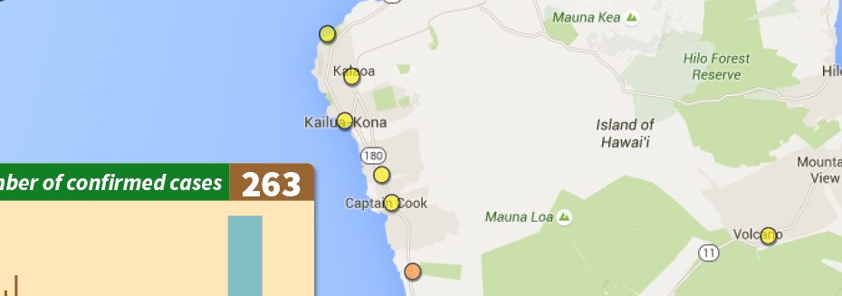 One New Dengue Fever Case, Small Risk Increase In South Kona