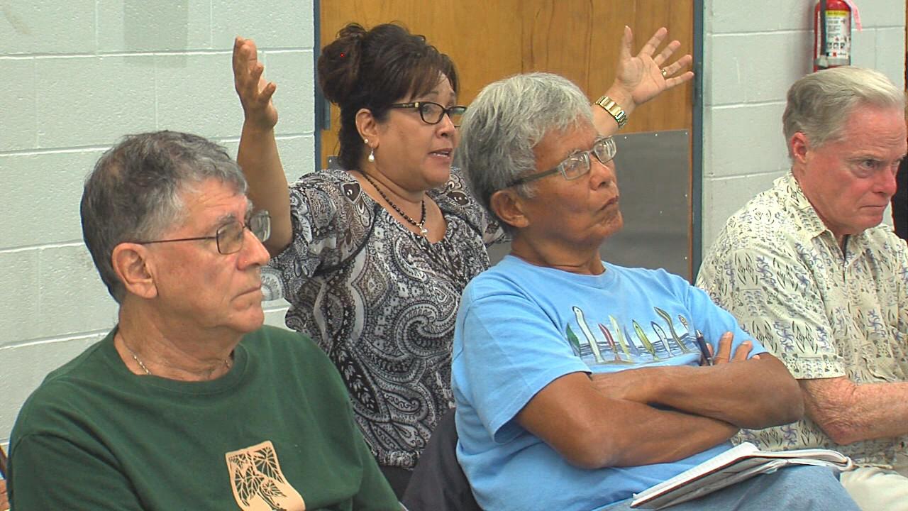 VIDEO: Community Speaks Out On Hakalau Point