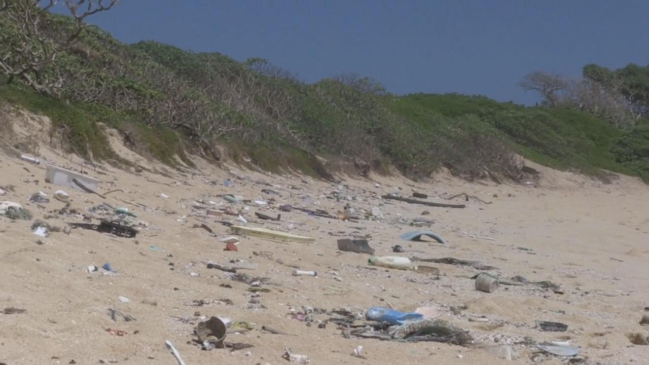 VIDEO: Plastic Dominates Hawaii Marine Debris, Survey Shows