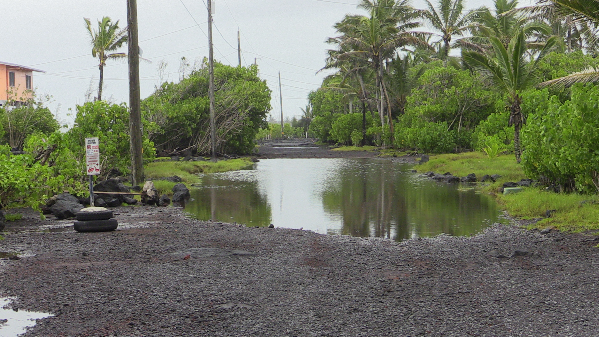 Some minor flooding seen in Kapoho this morning. Image by Daryl Lee.