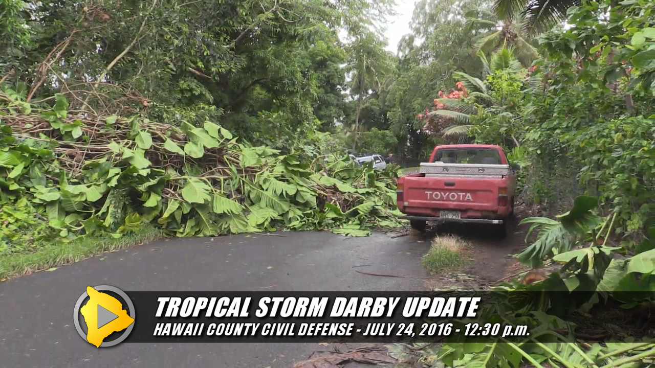 Hawaii Island Surveys Tropical Storm Darby Impacts