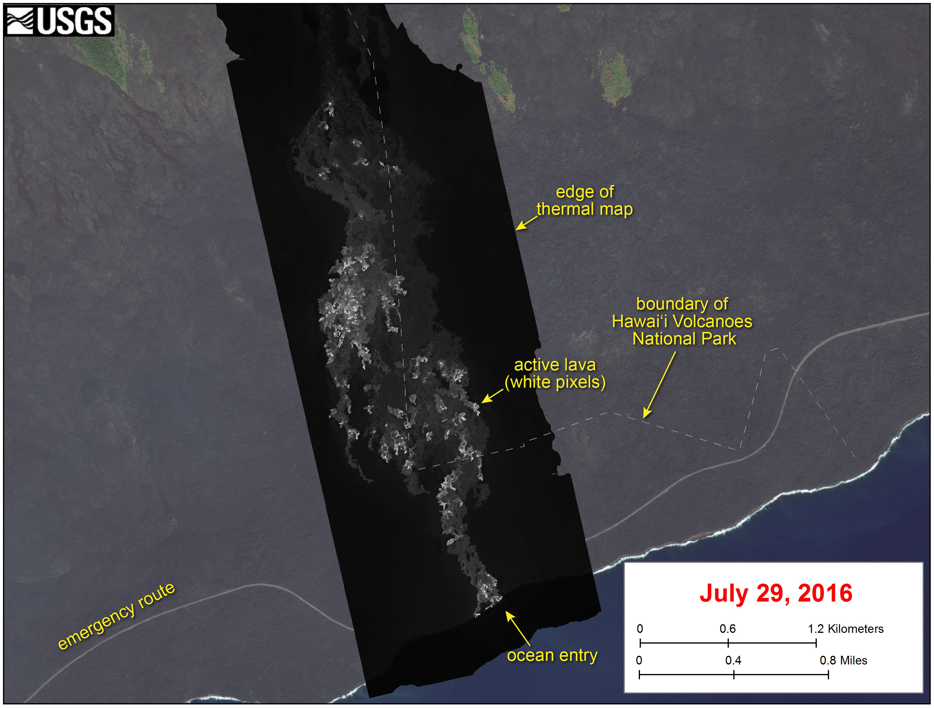 This USGS image shows a thermal map of the flow on the pali and coastal plain, created from airborne thermal images. White pixels are hot, and show areas of active surface breakouts. The background image is a satellite image collected before the current lava flow was active. The thermal map shows scattered pāhoehoe breakouts on the coastal plain, with a narrow lobe of lava crossing the gravel road and extending to the ocean.