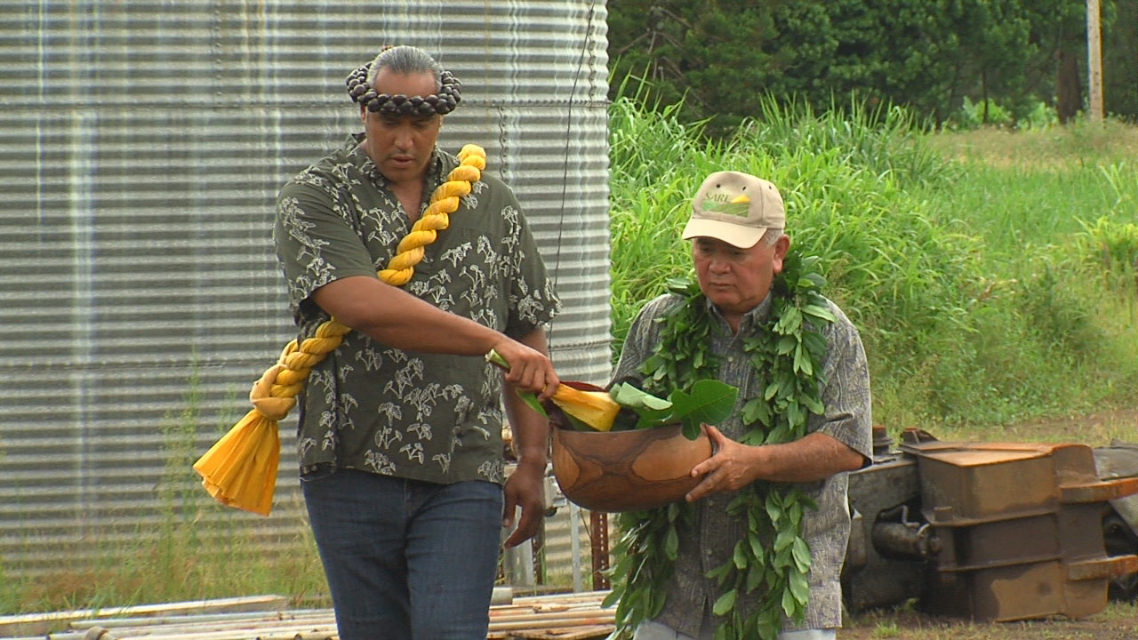 VIDEO: Lau Ola Cannabis Dispensary Breaks Ground