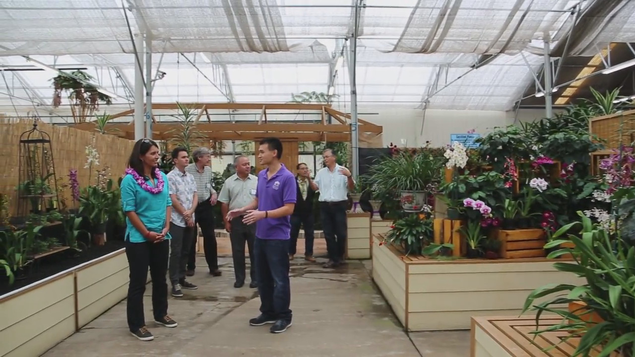 Rep. Tulsi Gabbard Takes Hawaii Island Farm Tour