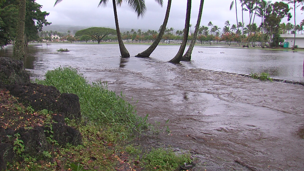 VIDEO: Madeline Flood Spot – Pauahi Street in Hilo