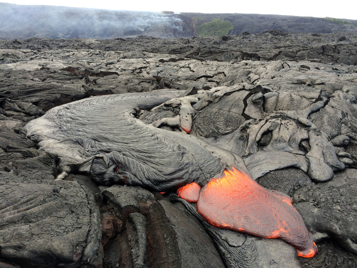 This USGS photo shows a typical lobe of pāhoehoe lava filling in a small depression on the coastal plain.