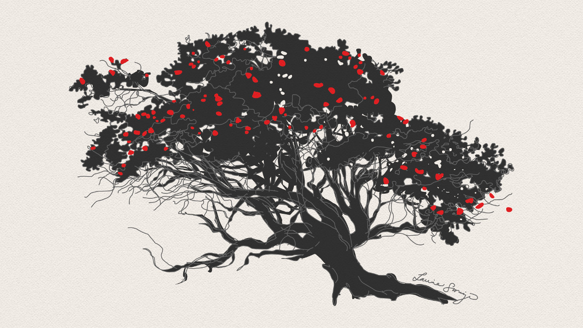 VIDEO: Visual Artist Crowdfunds In Support of Dying Ohia Trees