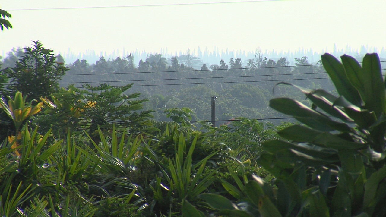 A hazy Hilo morning on November 11, 2016.