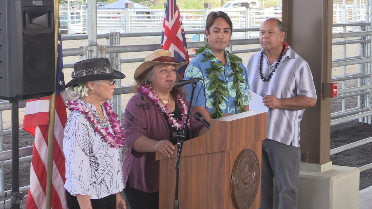 Councilwoman Maile David speaks. Courtesy County of Hawaii.