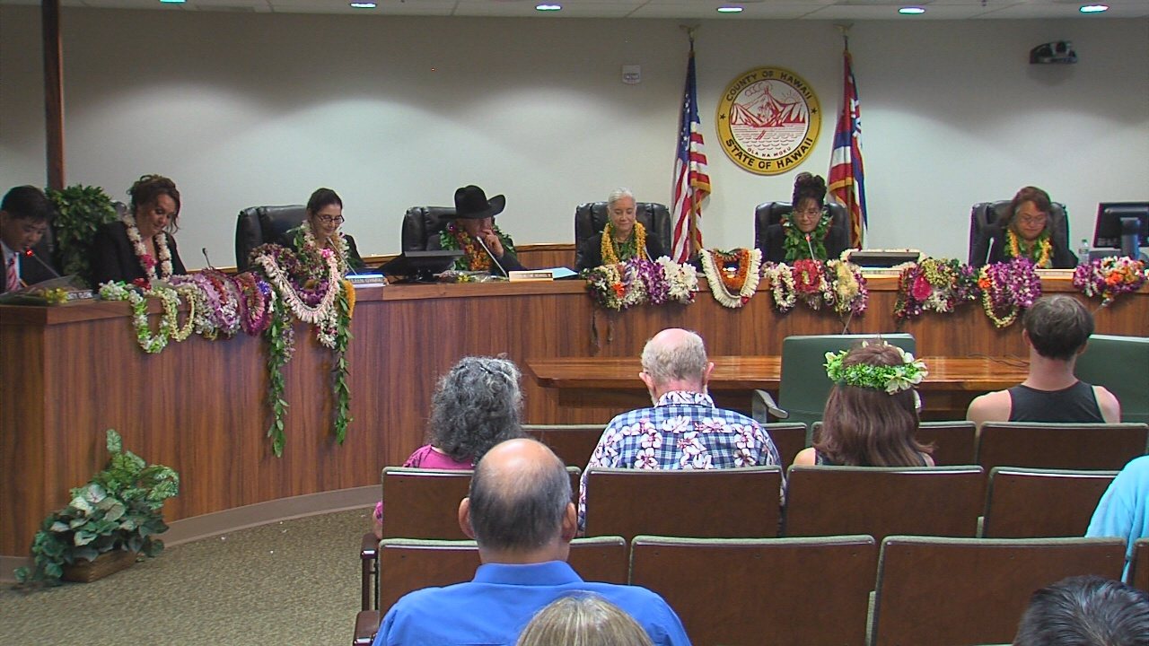 VIDEO: New County Council Organizes, Assigns Chairs