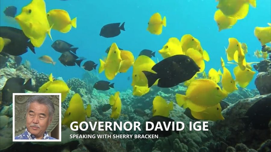 VIDEO: Gov Intends To Veto Aquarium Life Bill