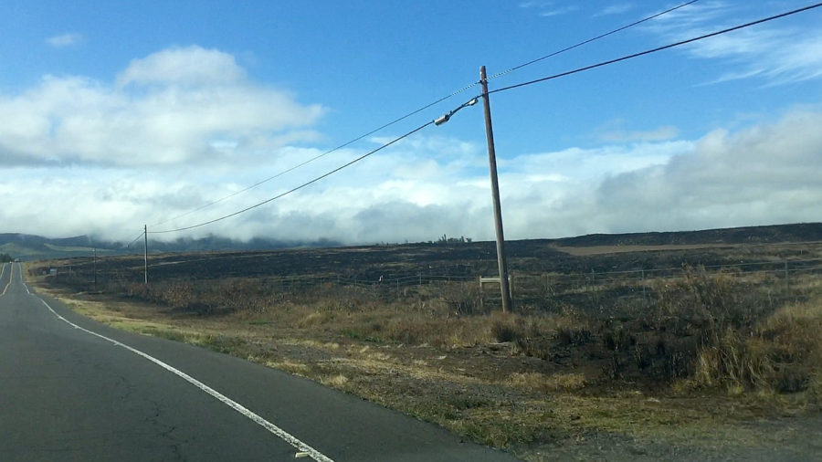 Waimea Fire Fighting Effort Praised