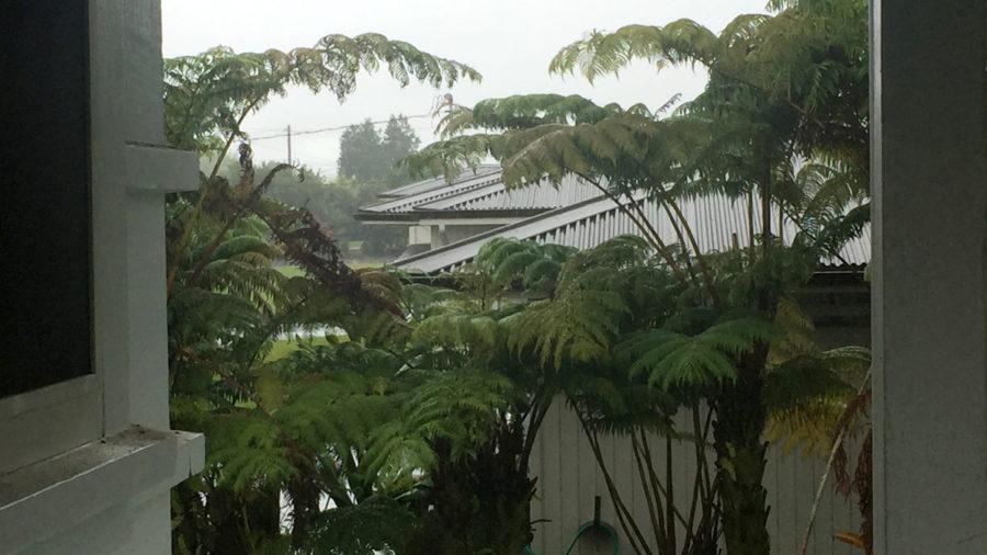 Remnants Of Tropical Storm Greg Bring Rain, High Humidity