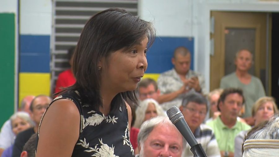 Rep. San Buenaventura To Host Puna Roads Meeting