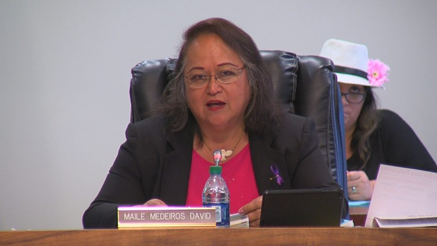 VIDEO: Ka'u CDP Approved In Final Council Vote