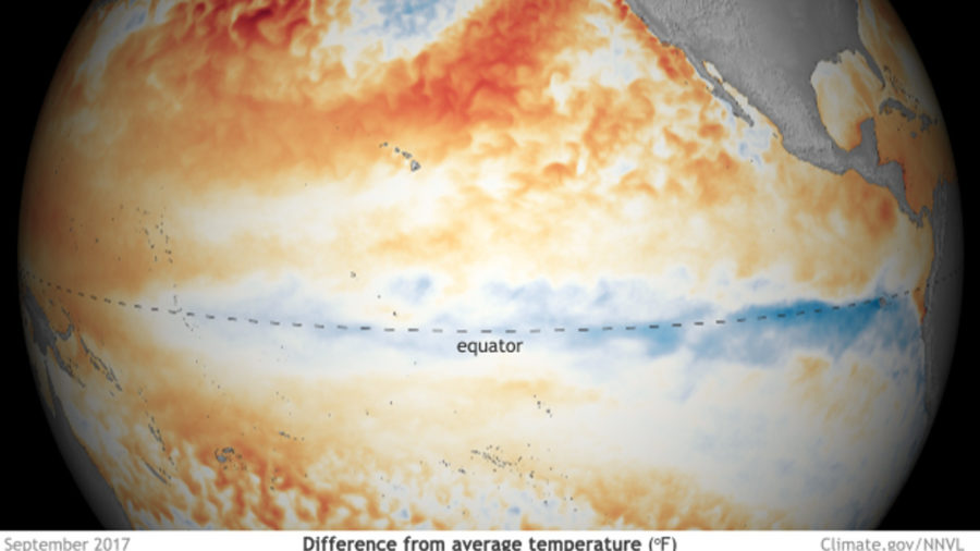 VIDEO: El Nino Year Hurricanes Concern Hawaii