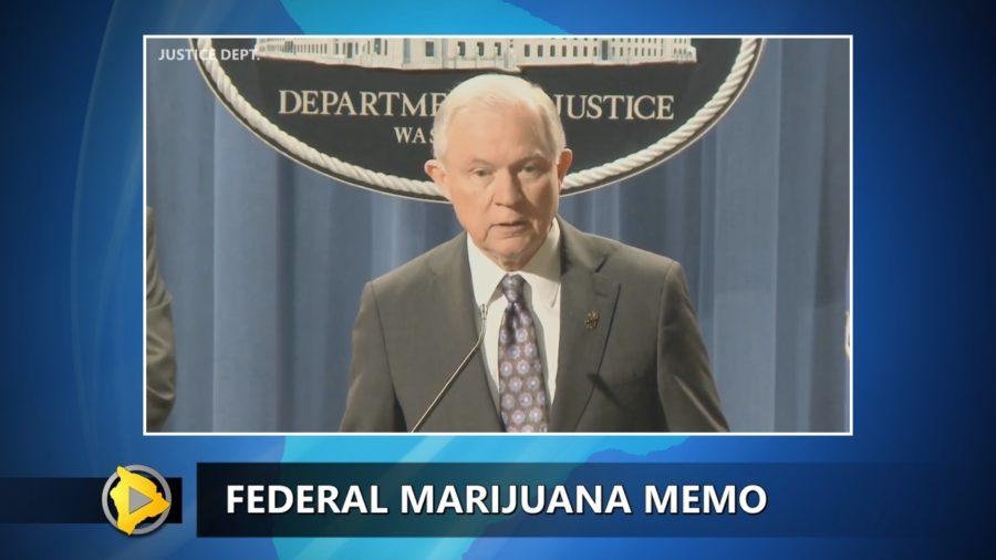 VIDEO: Federal Marijuana Directive Has Hawaii On Edge