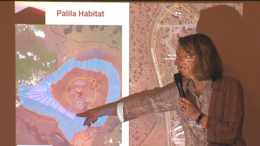 VIDEO: Mauna Kea VIS Improvements Hearing Held In Hilo