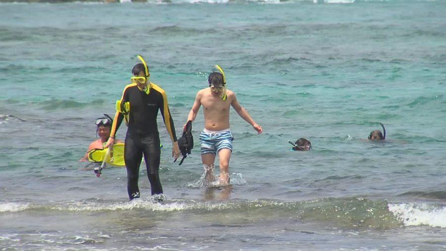 Coral Spawning Event To Close Kahalu'u Beach Park