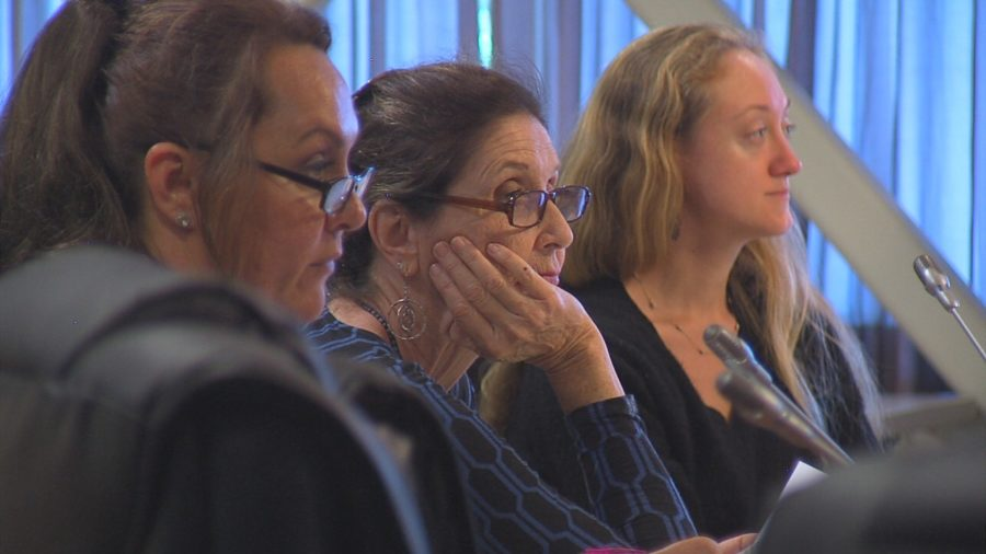 VIDEO: Public Testifies On Vacation Rental Bill 108