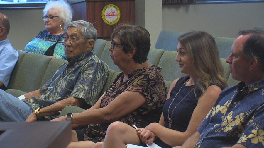 VIDEO: Council Approves New Charter Commission