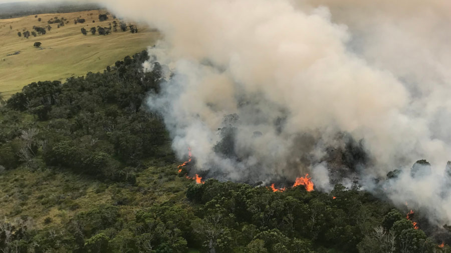 Mauna Loa Brush Fire Doubles In Size