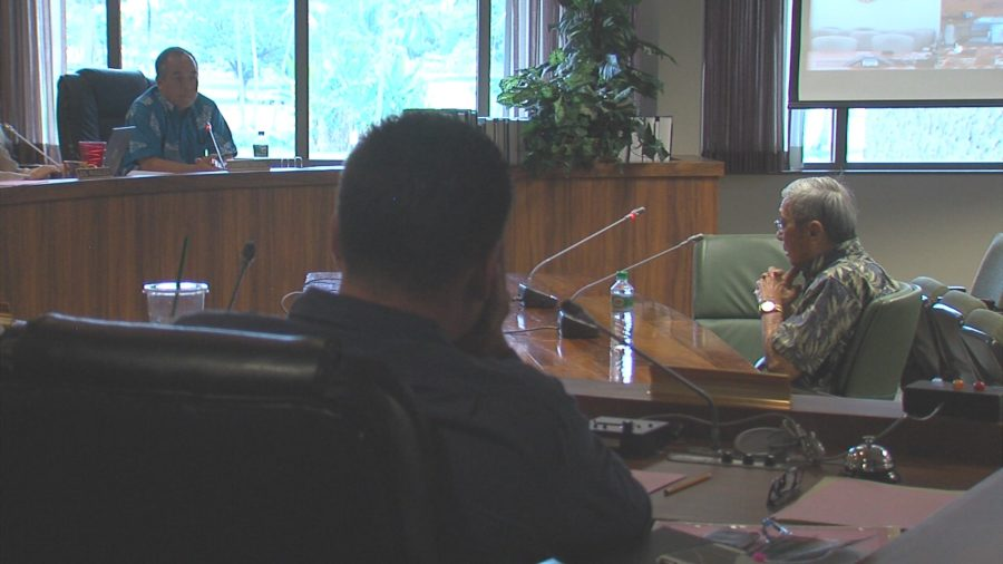 VIDEO: Special Session Ask For Eruption Relief Discussed At Council