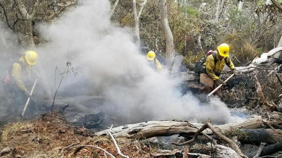 Mauna Loa Brush Fire 80 Percent Contained