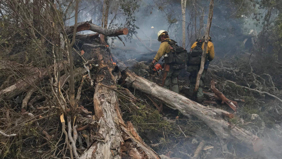 Mauna Loa Brush Fire Now 63 percent Contained
