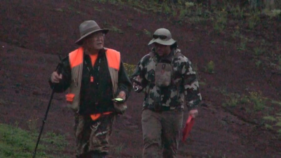 VIDEO: Counts, Aerial Hunts On Mauna Kea Before Game Bird Season