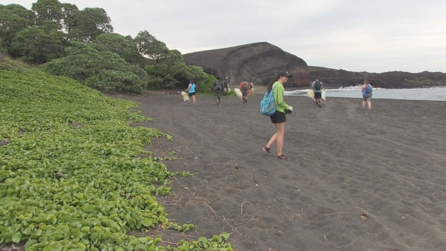 VIDEO: Hawaii Wildlife Fund Marks 250-tons Of Debris Removal