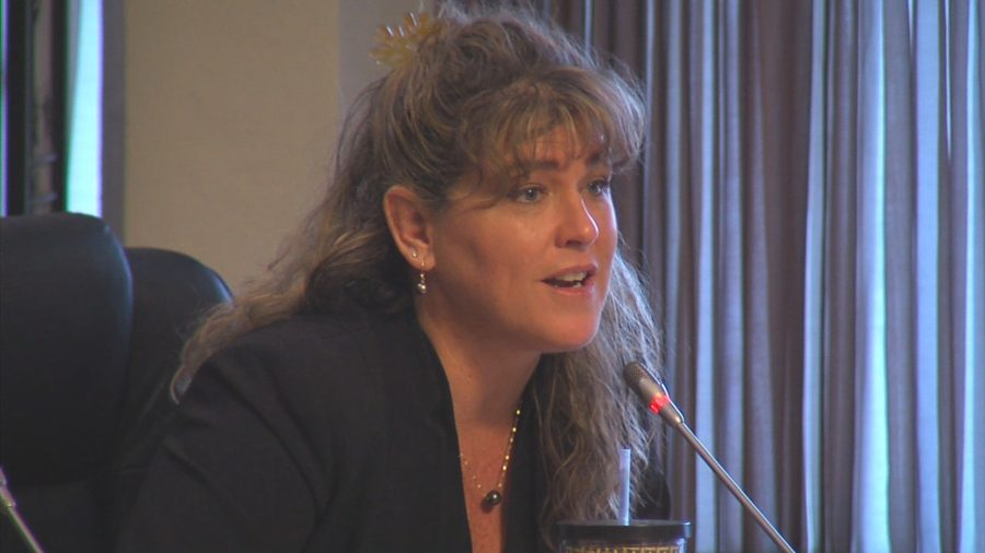 VIDEO: West Hawaii Councilmembers Press DPW Director