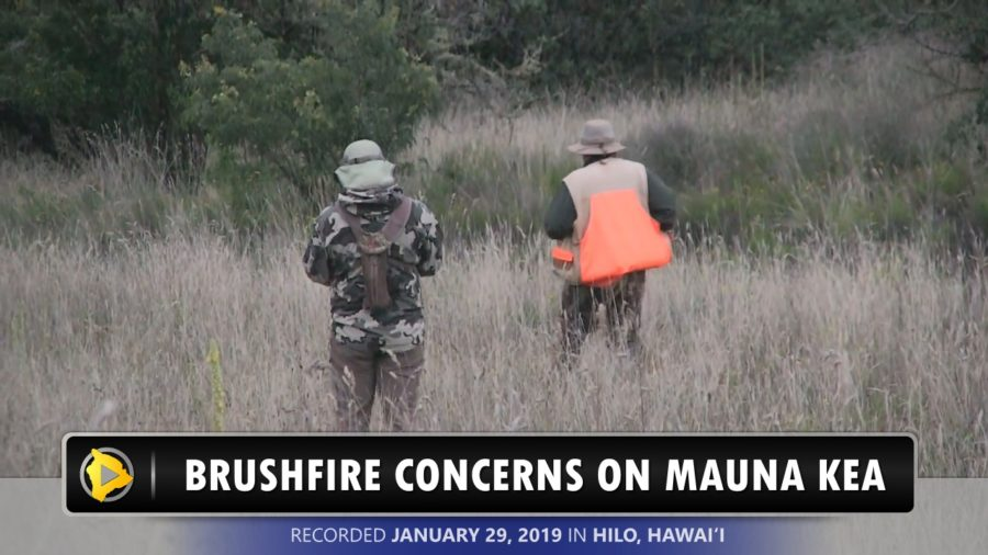 VIDEO: Brush Fire Concerns Growing On Mauna Kea