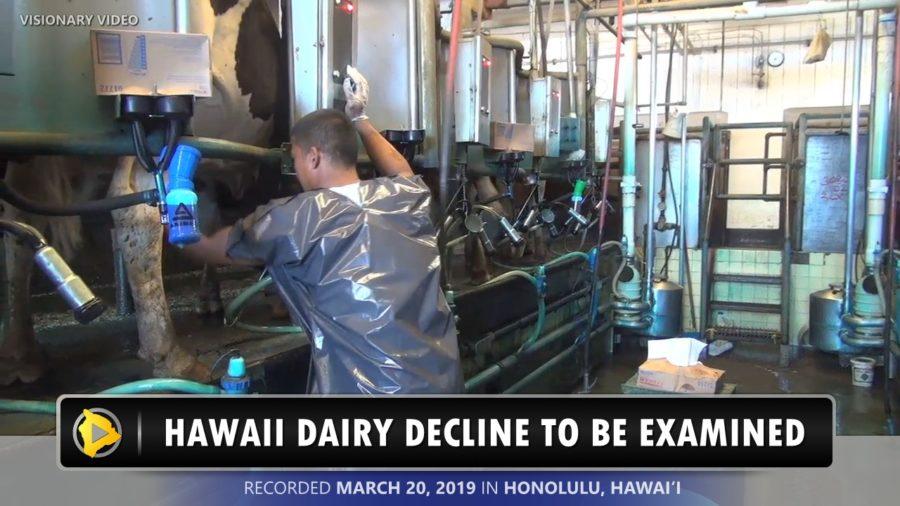 VIDEO: Senate Committee Votes To Examine Hawaii Dairy Decline