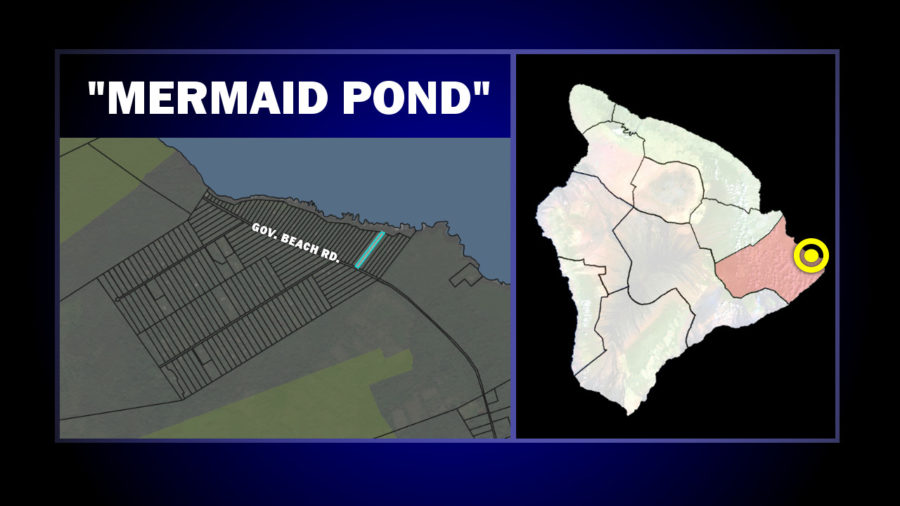 "VIDEO: Puna ""Mermaid Pond"" Access Preservation Pondered"