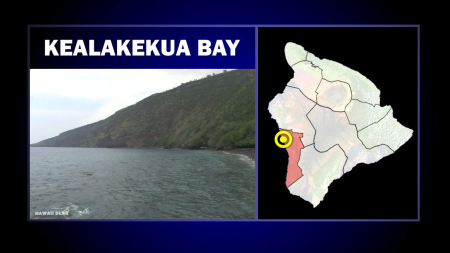 Apparent Drowning Reported In Kealakekua Bay