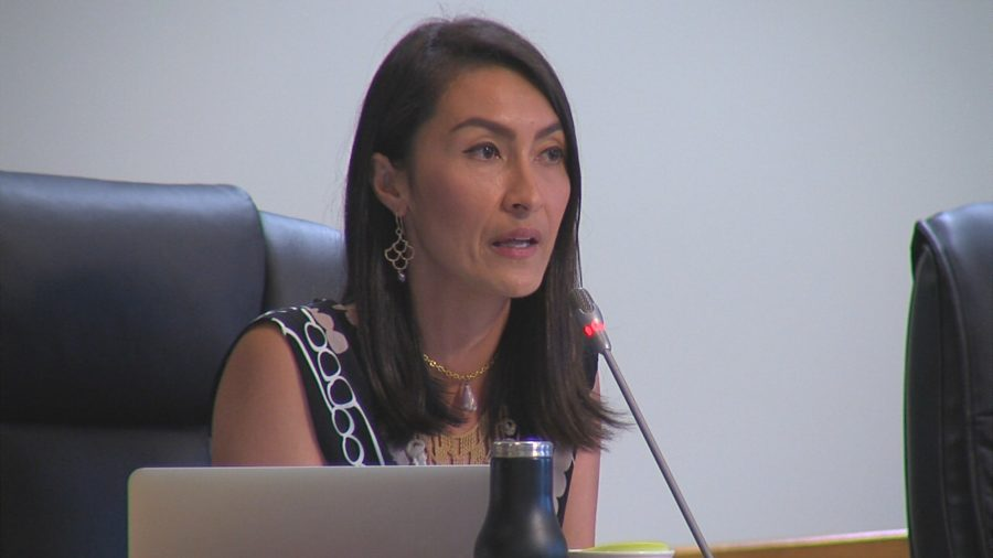 VIDEO: Hawaii County Whistleblower Program Discussed