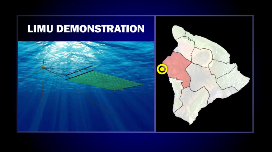 Offshore Limu Demonstration Project Planned