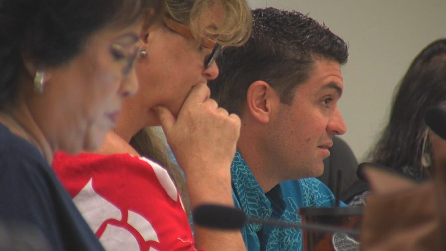 VIDEO: Olson Trust Puueo Development Vote Postponed By Council