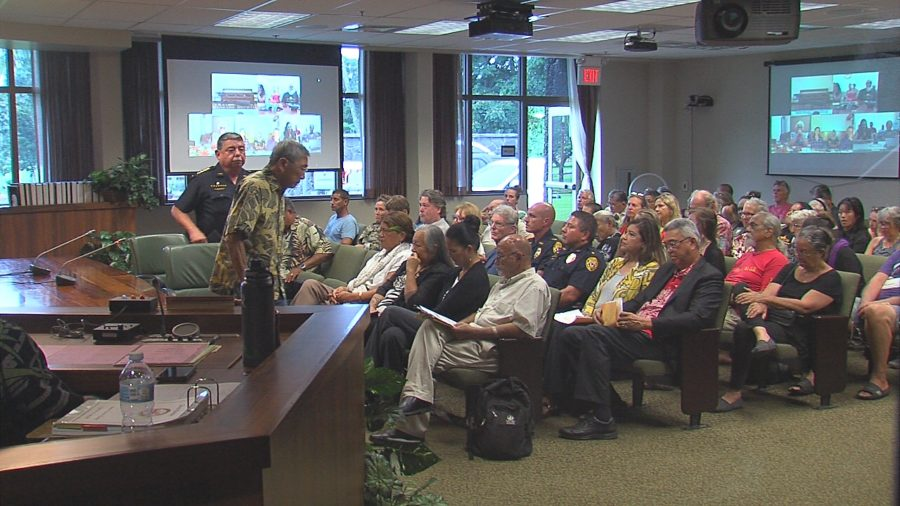 VIDEO: TMT Opponents Testify At County Council