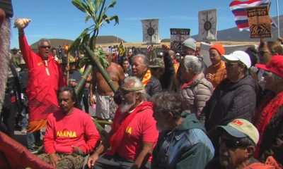 VIDEO: Kupuna Decry Governor's Emergency Proclamation