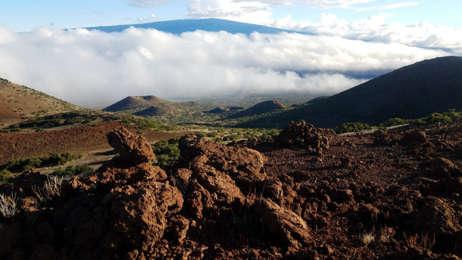 Mauna Kea Hunting Access Restored