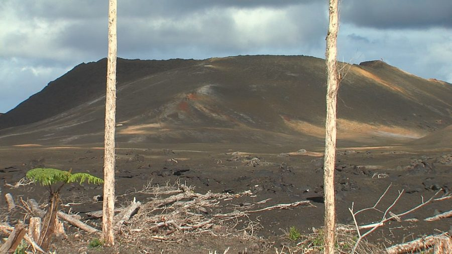 Half Puna Eruption Survivors Who Were Told They Owe FEMA, Cleared
