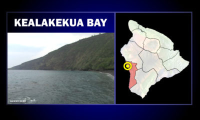 Shark Bite Reported In Kealakekua Bay